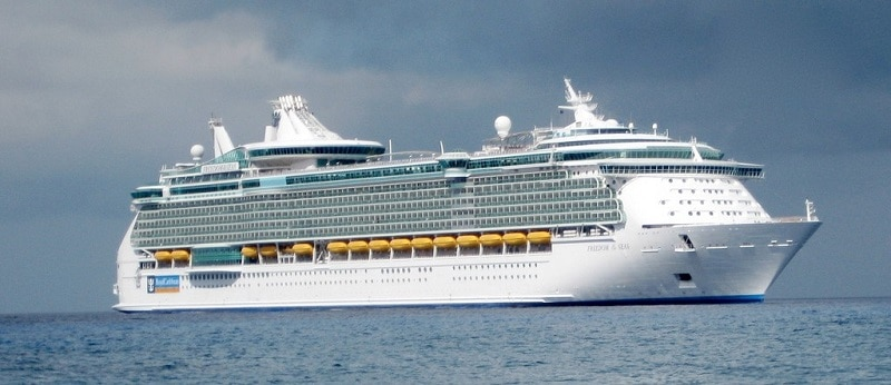 The Freedom of the Seas at sea