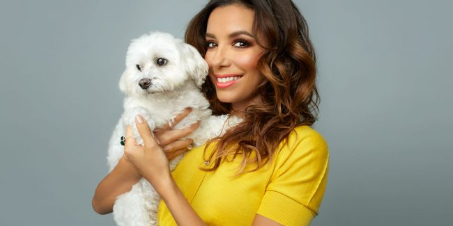 Eva Longoria Branches Out, The Parade Interview  VIDEO