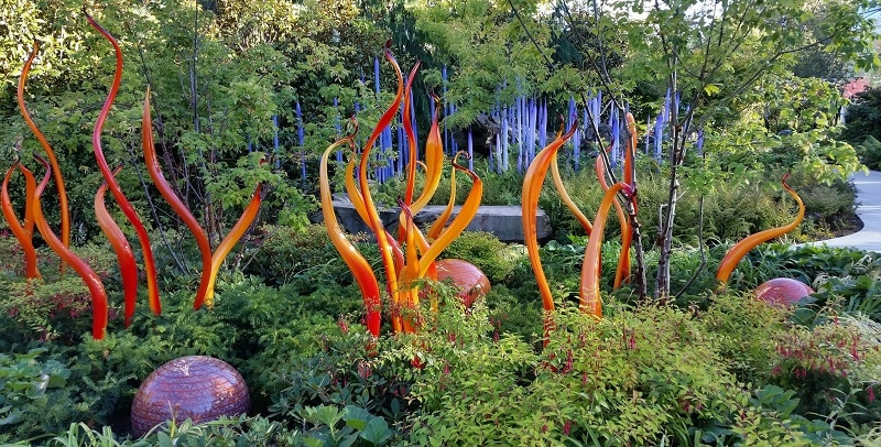 A striking glass exhibit at Chihuly Gardens and Glass