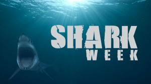 Shark-Week2