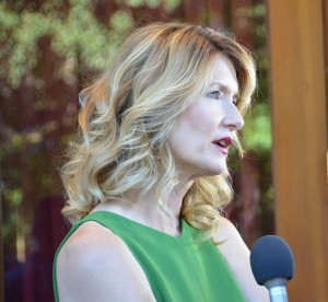 """Laura Dern - 37th Annual Mill Valley Film Festival - Closing Night Film - """"Wild"""" - Arrivals  - CineArts at Sequoia - Mill Valley, CA, USA  Photo is copyright by Jonathan  Shensa / PR Photos"""