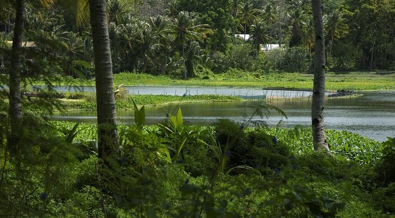 Lagoon in Nauru