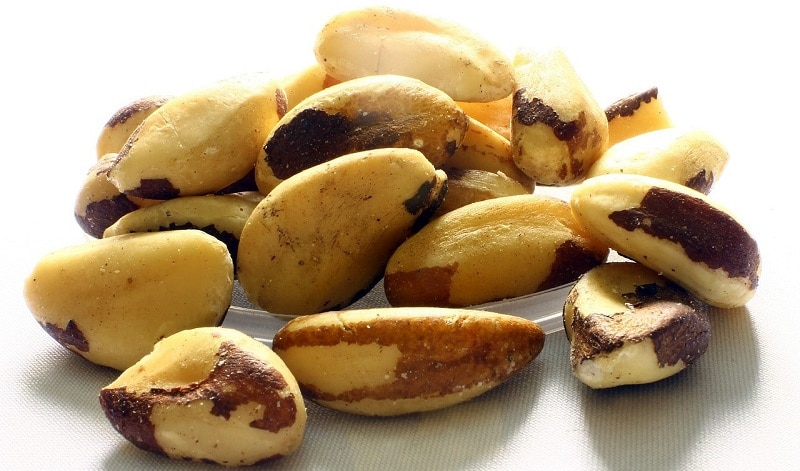 Close-up of Brazil nuts