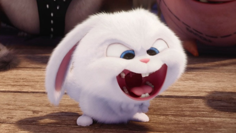the secret life of pets is wishing you a happy easter