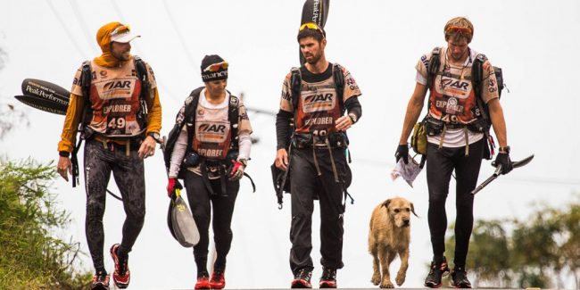 This stray dog joined an adventure team, what happened will warm your heart