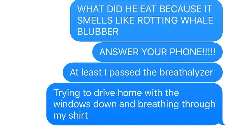 Dad's hilarious messages to wife after toddler vomits in car