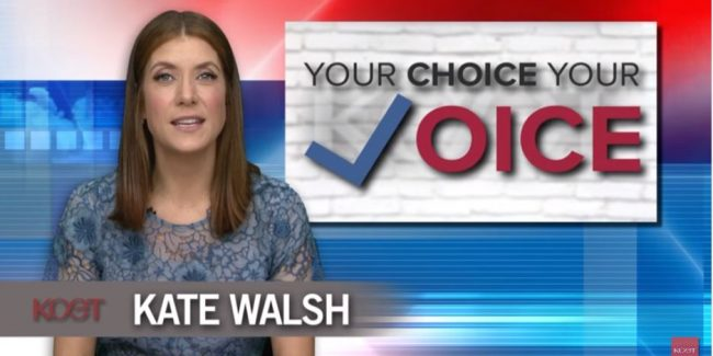 Kate Walsh on why she and KCET are urging voters to mobilize