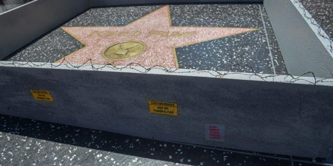 Donald Trump's star on Hollywood Walk of Fame gets a wall