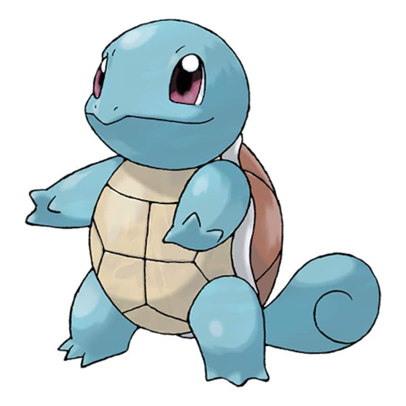 A picture of Squirtle