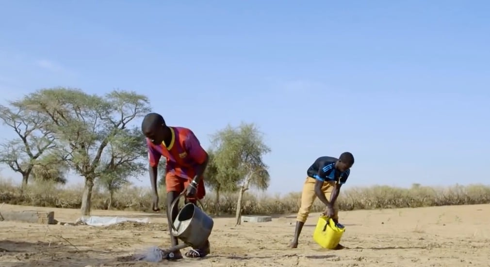 Climate change in Niger