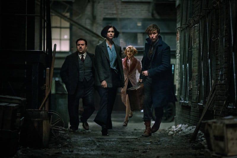 Dan Fogler, Alison Sudol, Eddie Redmayne, and Katherine Waterston in Fantastic Beasts and Where to Find Them
