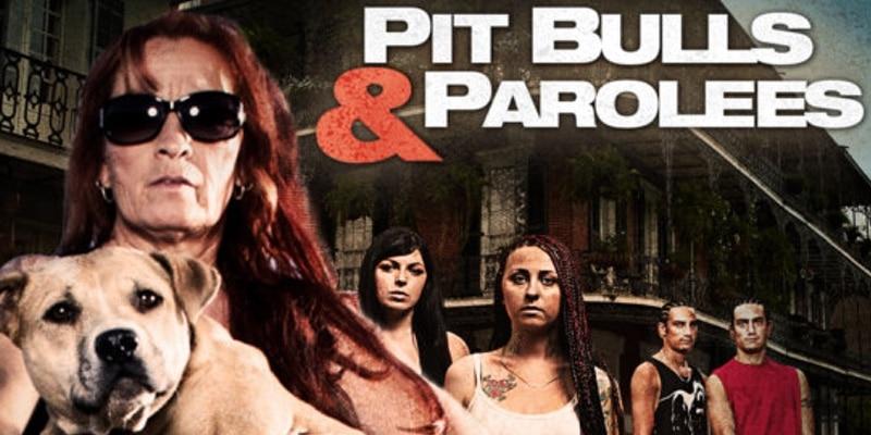 Pit Bulls and Parolees  Season 8