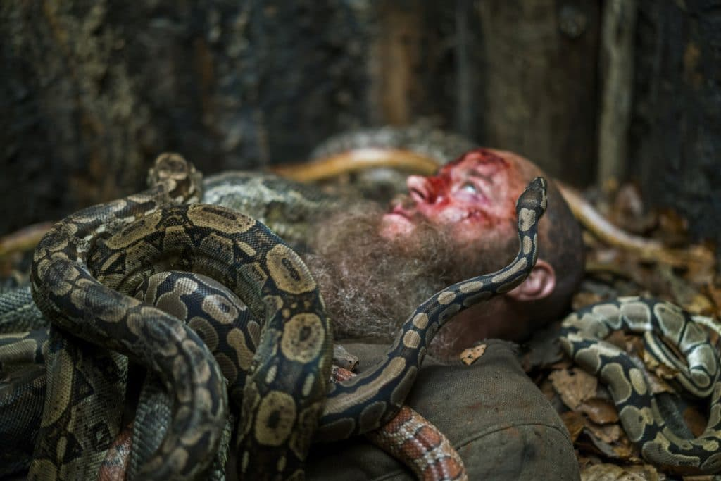 Ragnar covered in snakes on Vikings