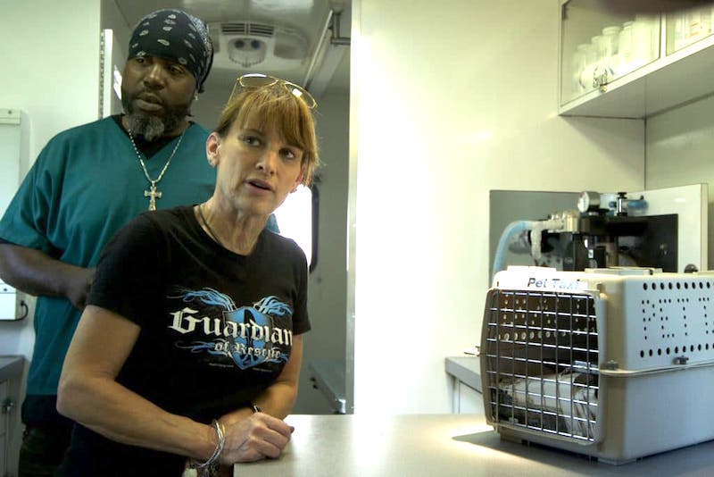 Dori with Moose in the Guardians of Rescue mobile vet unit on Animal Planet's The Guardians