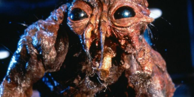 Jeff Goldblum's fly-hybrid creature in The Fly, one of the best monster movies of all time