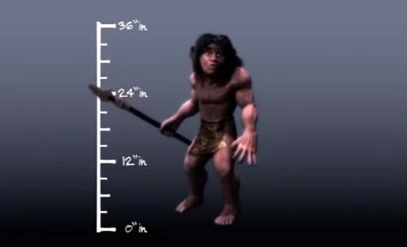 An artists' impression showing the size of a Menehune male