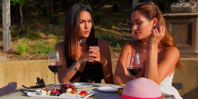 Brie wants to savor the wine in Napa while Nikki wants to monetize it on Total Divas