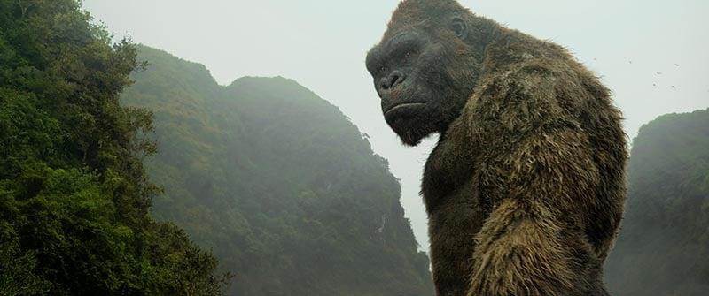 Kong rules Skull Island