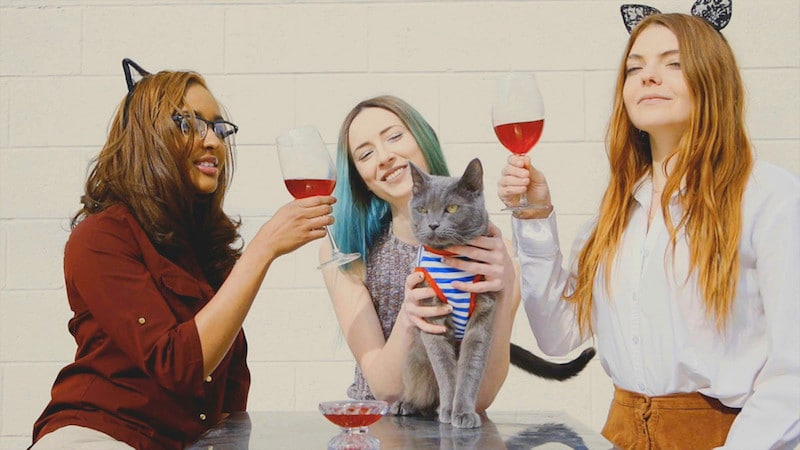 Apollo the cat, Apollo Peak's Chief Feline Officer, enjoying a glass of Catbernet with his friends