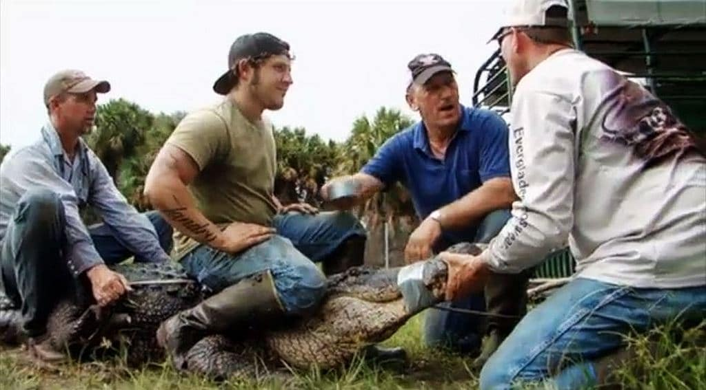 Swamp People: Everglades sees tegu lizards, pythons and an elusive croc