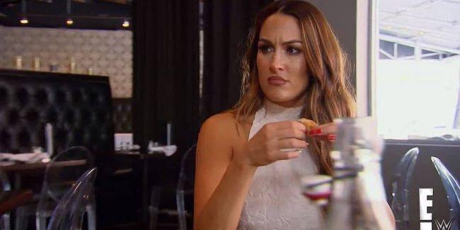 Nikki Bella on Total Divas