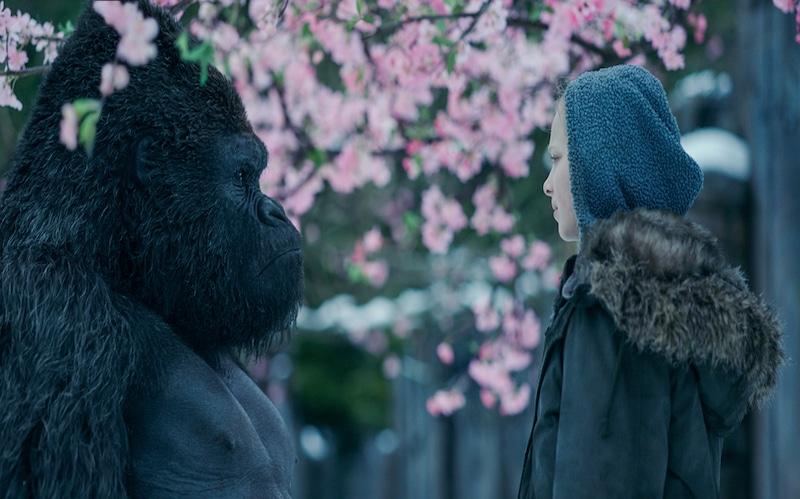 Adamthwaite, now turned into a gorilla through CG, in the same scene