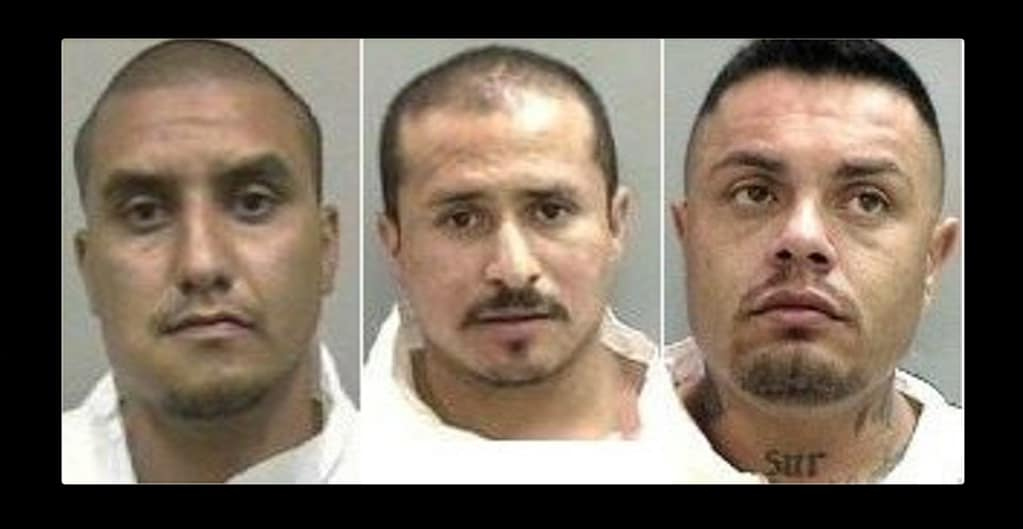 "Alberto Martinez, Armando Macias and Anthony ""Droopy"" Navarro mugshots"