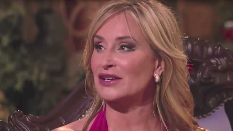 Sonja Morgan on The Real Housewives of New York City reunion