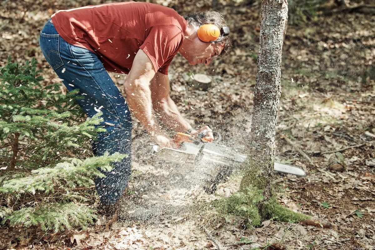Marty cuts down a tree on on The Curse of Oak Island Season 5
