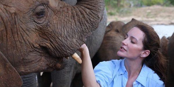 Kristin Davis with an orphaned elephant