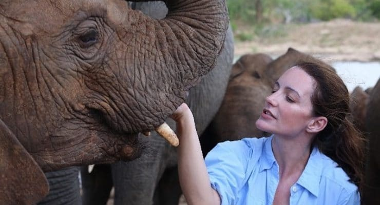 Kristin Davis helps raise thousands to save orphaned elephants and protect other wildlife