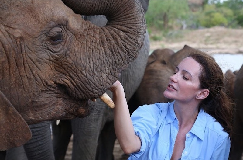 Kristin Davis with an orphaned elephant