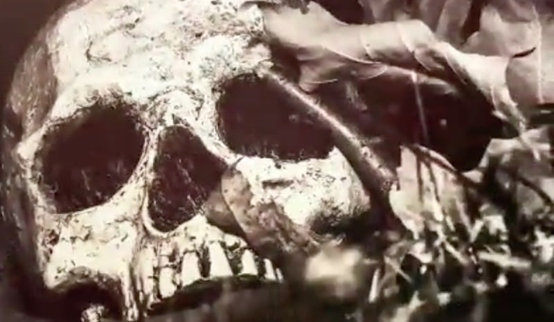 Skull at end of The Curse of Oak Island Season 5 Episode 2