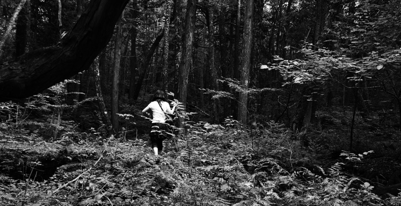 Suicide Forest on Josh Gates' Destination Truth