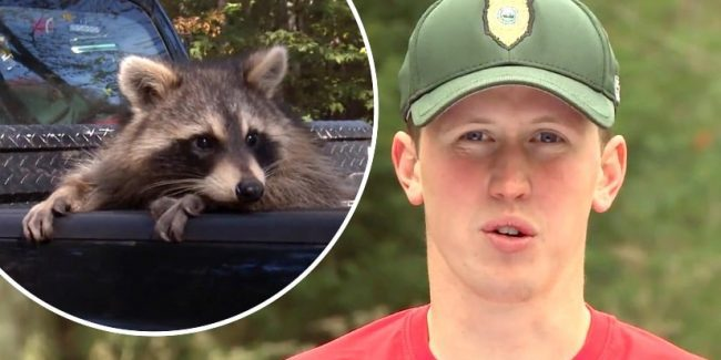 Stills from the new season of North Woods Law on Animal Planet