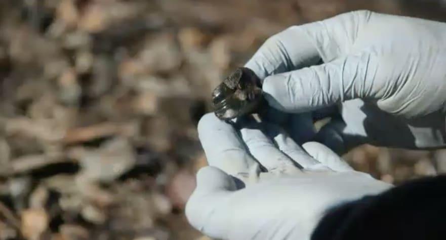 the curse of oak island digging deeper episode guide