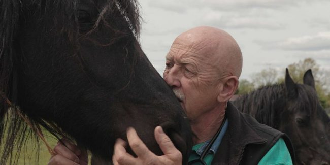 Interview: The Incredible Dr. Pol talks Rock A Baa Baby and more