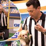Puppy Bowl XIV referee Dan Schachner