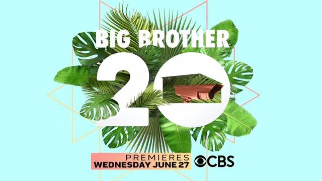 Big Brother season 20 logo