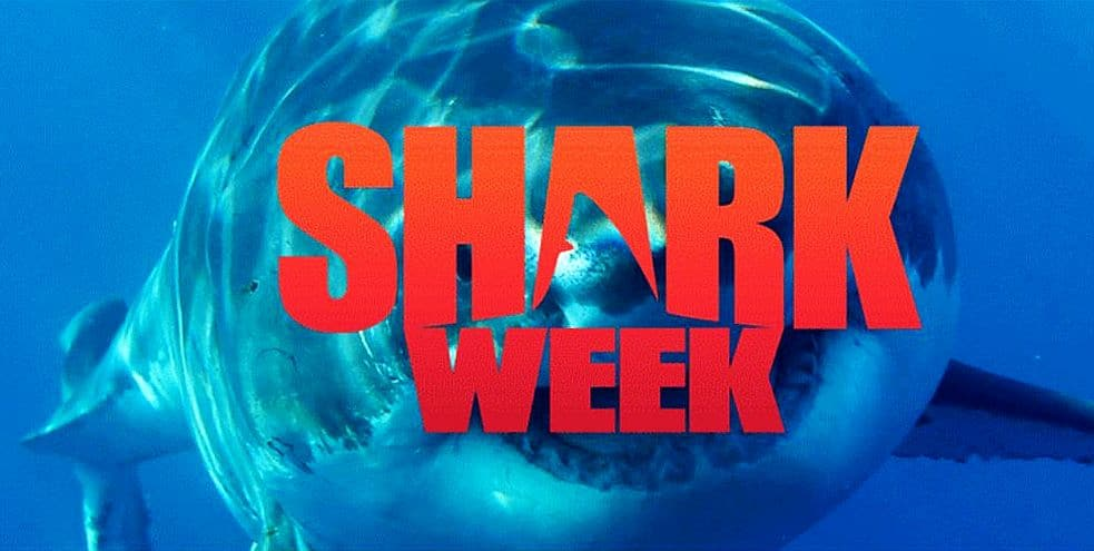 Shark Week is back and we have the lineup for you