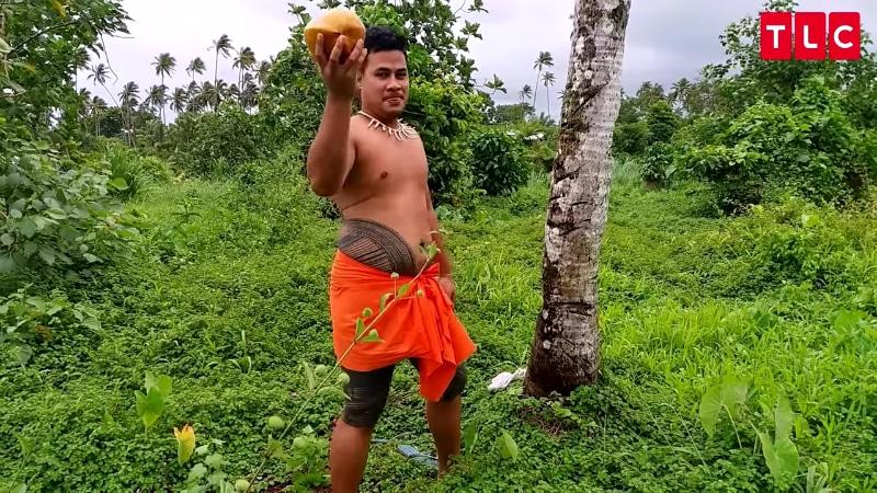 Asuelu picking coconuts in Samoa