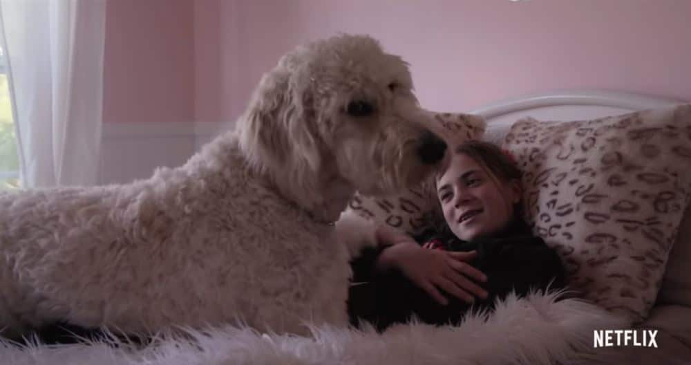 dogs 150x150 - Dogs docuseries on Netflix tells six stories of unconditional love: Watch the trailer ahead of November release date