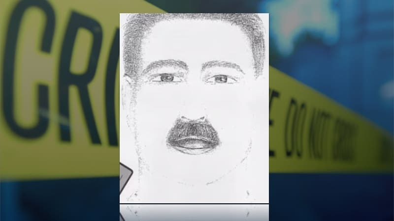 Sketch from witness descriptions