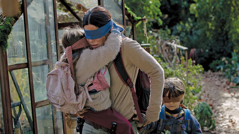 Was John Cena In Bird Box? Why Google Has The WWE Superstar Listed As Appearing In The New ...