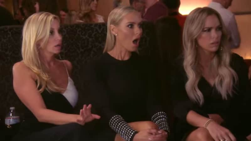 3c6467b4b02 Dorit Kemsley s dog incident and Vanderpump Dogs  What to know about the  Dorit and Lisa drama