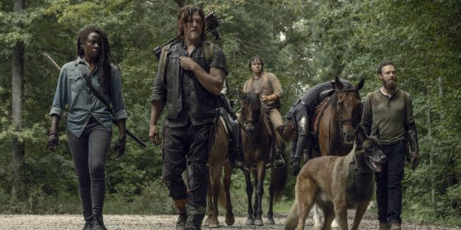The Walking Dead spoilers: Popular cast member could leave the show?