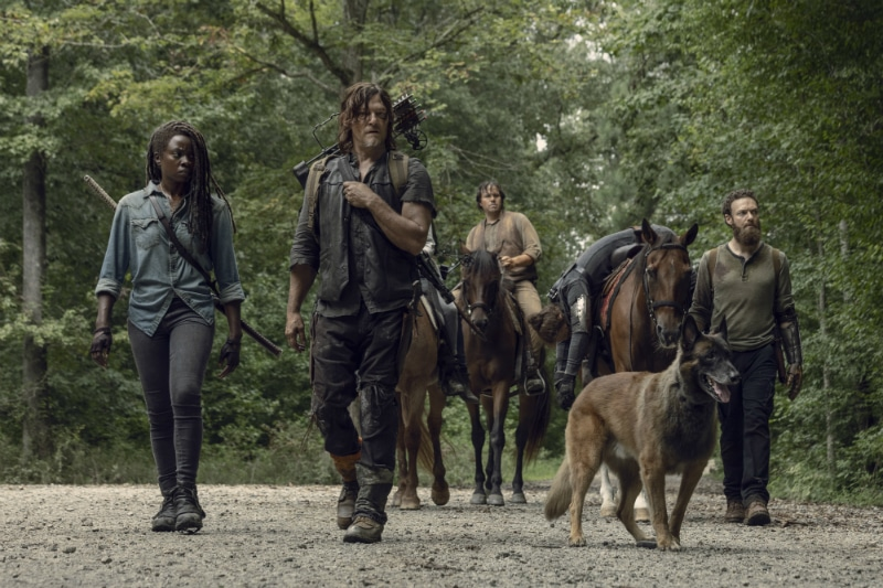 Michonne, Daryl and others on The Walking Dead