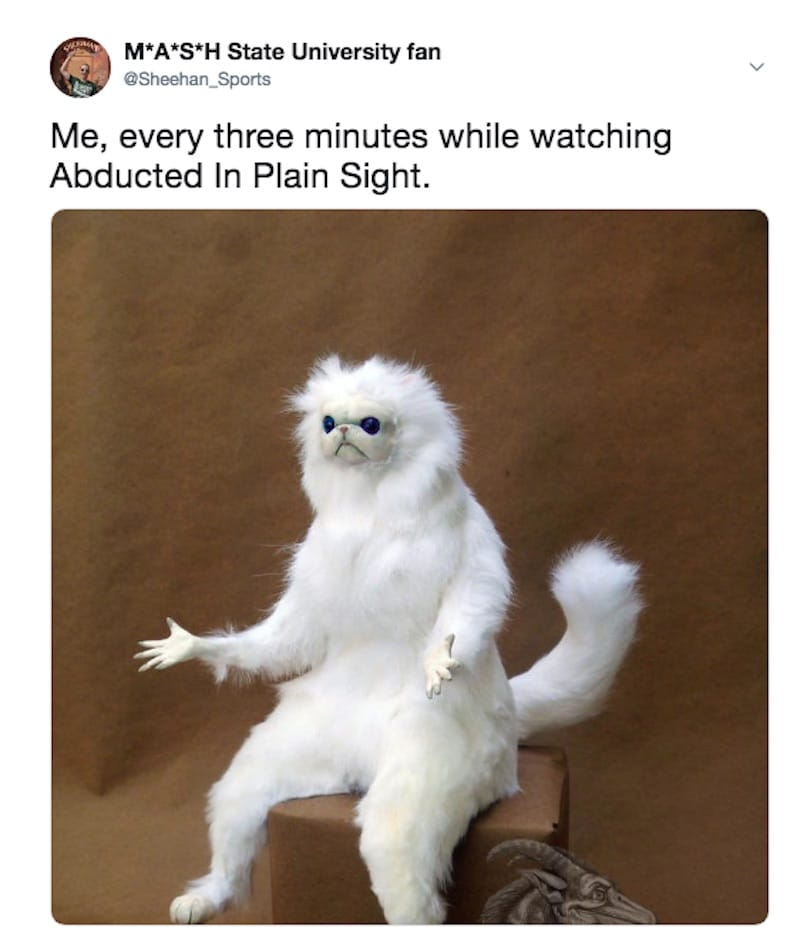 Abducted in Plain Sight meme