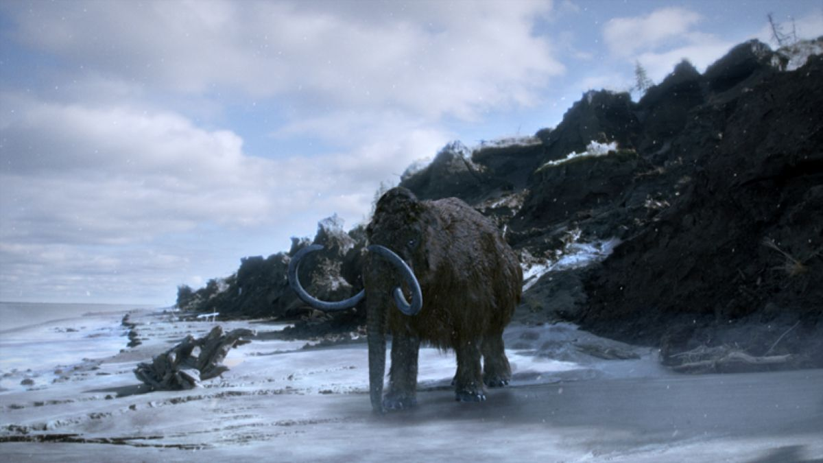An artistic rendering of mammoths in the wild. Pic credit: Science Channel