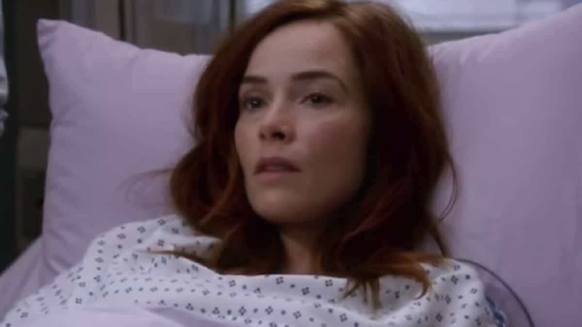 Abigail Spencer as Megan Hunt on Grey's Anatomy cast.